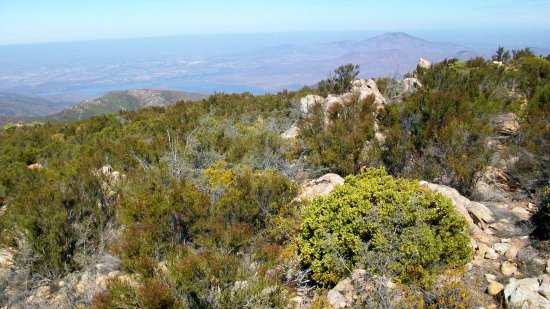 Jamul, CA: Otay Lakes in the distance from BLM Otay Mountain Wilderness Area