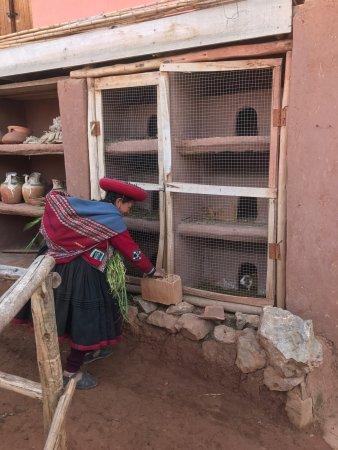 Chinchero, Pérou : photo2.jpg
