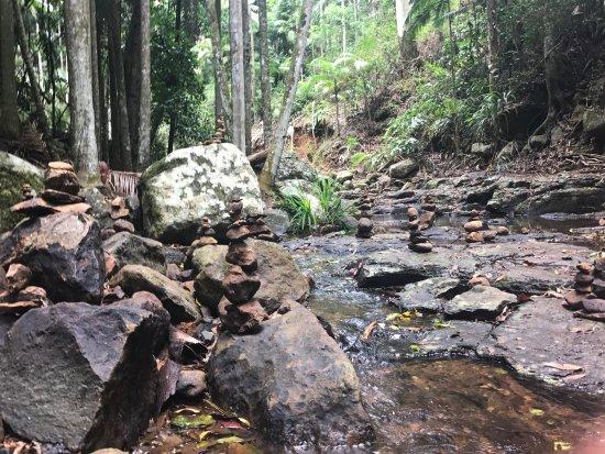 Tamborine Mountain, Australia: photo0.jpg