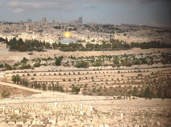 Danny the Digger: View of the Holy City from The Mount of Olives