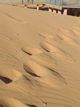 Coral Pink Sand Dunes State Park: IMG_20171011_1726394_large.jpg