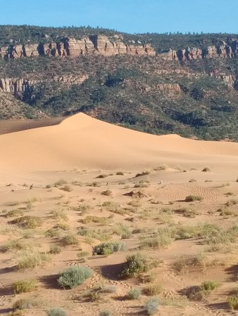 Coral Pink Sand Dunes State Park: IMG_20171011_1710396_large.jpg
