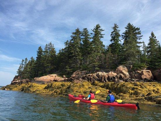 National Park Sea Kayak Tours Reviews