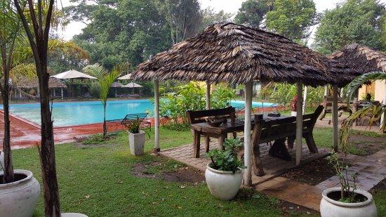 Ilboru Safari Lodge: Pool area