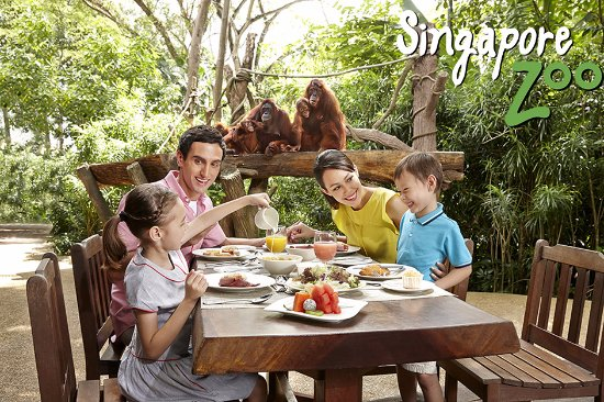 ‪سنغافورة, سنغافورة: Enjoy our award-winning Jungle Breakfast with Wildlife,a buffet spread in the company of orangut‬