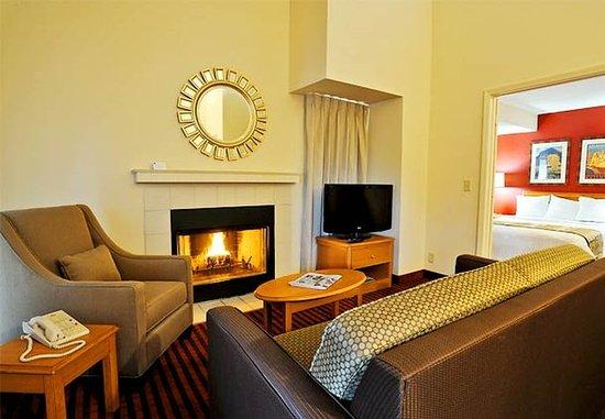 แมดิสันไฮทส์, มิชิแกน: Executive Penthouse Living Area
