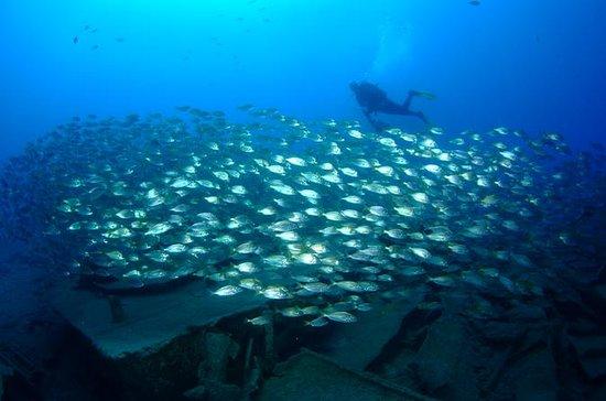 Tauchkurs im offenen Wasser