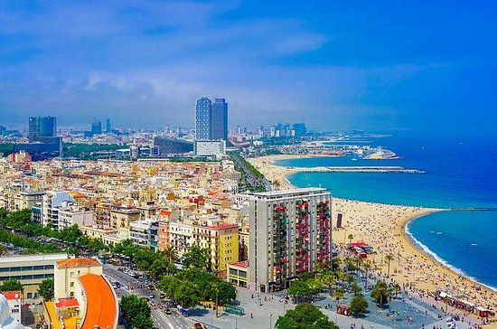 Barcelona Private City Tour and La...