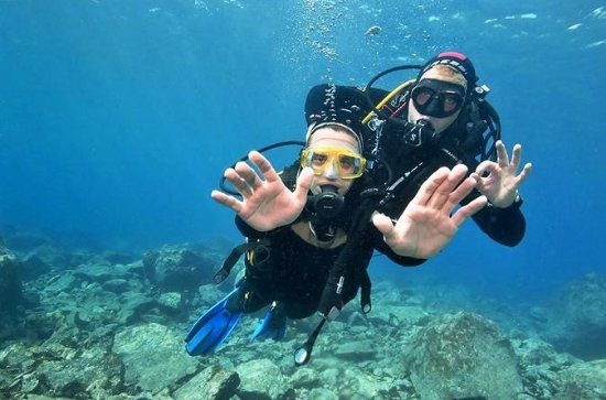 Discover Scuba Diving Beginner ...