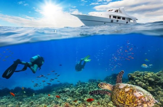 Boat Introductory Dive