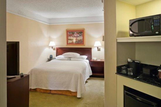 Embassy Suites by Hilton Secaucus - Meadowlands: Queen Studio Guestroom