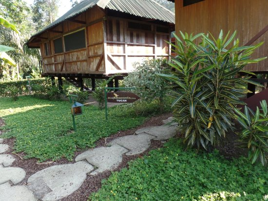 Ecoamazonia Lodge: Vista de un BUngalow
