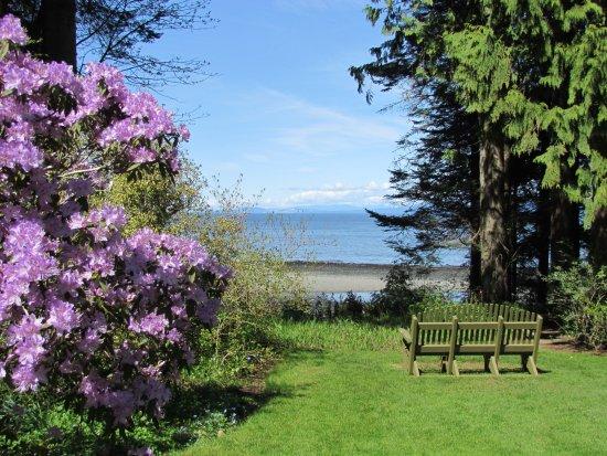 Milner Gardens & Woodland : Views of the ocean