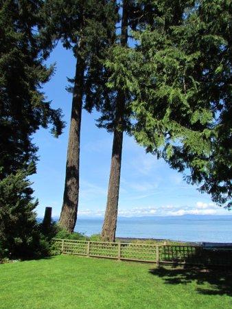 Milner Gardens & Woodland : More views of the ocean