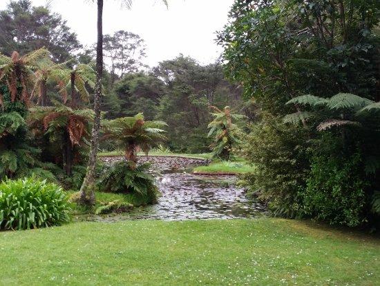 RAPAURA Watergardens: Gorgeous