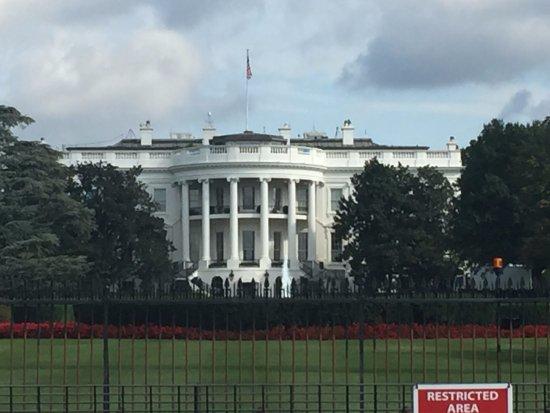 Cot bureau ovale picture of white house washington dc for Bureau ovale