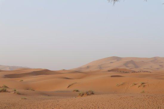 Merzouga Desierto: The start of the desert