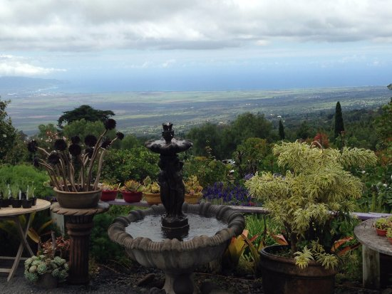 Kula, HI: Enjoy the view