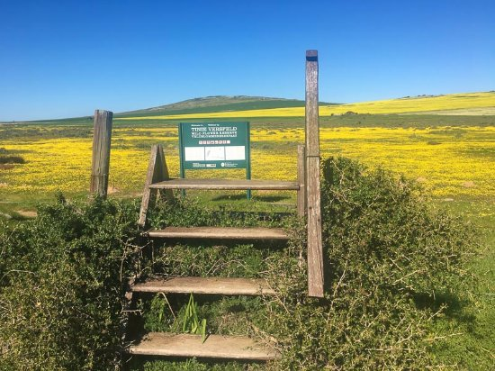 Tienie Versfeld Wildflower Reserve: steps to enter reserve