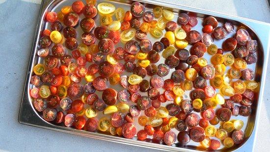 Eext, The Netherlands: Tomaatjes uit eigen kas
