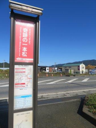 陸前高田市照片