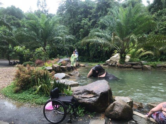 Phang Nga, Thaïlande : photo1.jpg