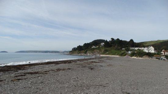 Tavistock, UK: The dog friendly beach at Seaton
