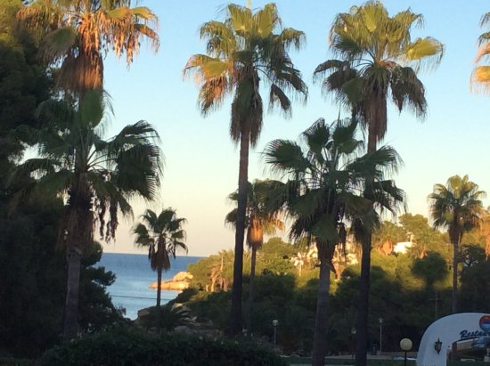 Hotel Rocamarina: Evening view from the terrace.