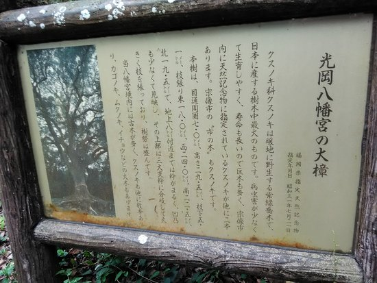 Mitsuoka Hachimangu
