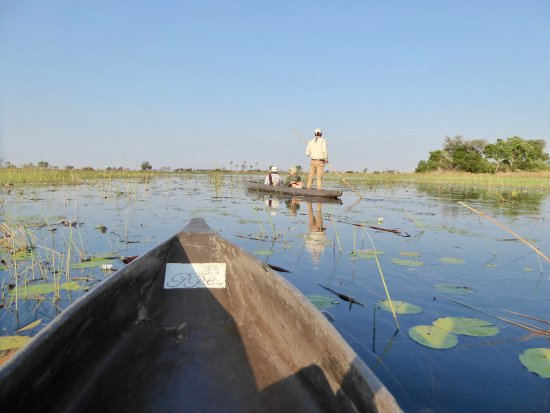 Pom Pom Camp: Mokoro safari on lagoon