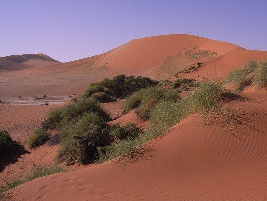 Namib-Naukluft Park, Namibia: Sossusvlei Dünen