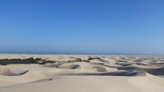 dunas colchester