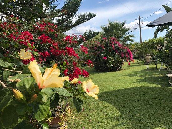 Foto di trappitello immagini di trappitello taormina - Angoli di giardino ...