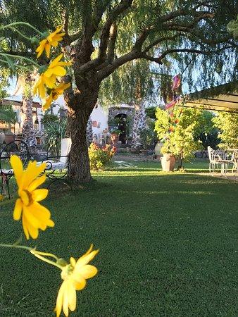 Il giardino fiorito, terrazza colazione, angoli di giardino relax ...