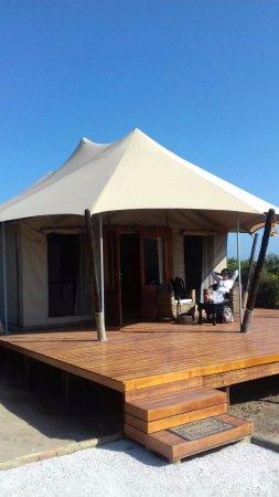 Colchester, Νότια Αφρική: tent