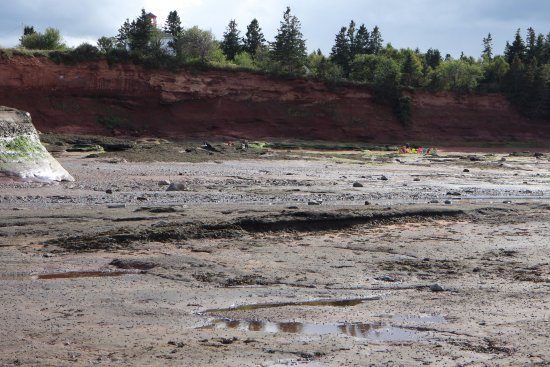 Bay of Fundy & Annapolis Valley of Nova Scotia, Kanada: Bruntcoat Head Park, Noel, Nova Scotia - ocean floor at low tide