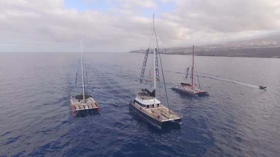 Freebird Catamarans