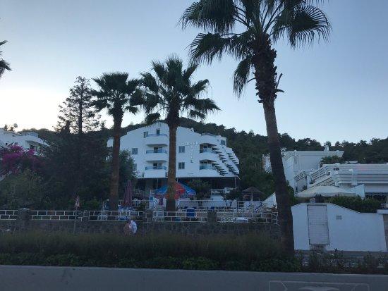 Hotel Adler: photo0.jpg