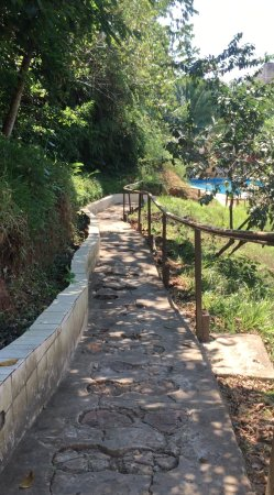 Samiria Ecolodge : Path to pool