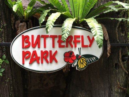 ‪Butterfly Park & Insect Kingdom‬