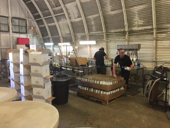 Haliimaile Distilling Company: Bottling up the spirits