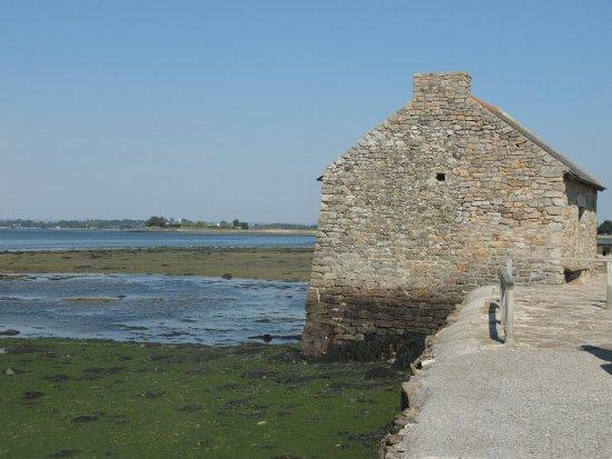 Ile-d'Arz, France: Moulin