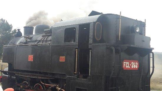 Treno della Sila: Trenino