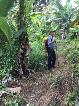 L.O.S.T Borneo - Jungle Trekking Specialist: Survival trekking 2d1n Con made were soo good in this trip. Thanks!
