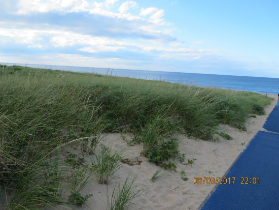 Race Point Beach : Nature's Trail