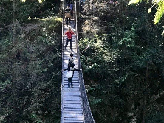 Kuzey Vancouver, Kanada: bridge 2