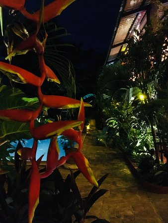 Brasilito, Costa Rica: photo2.jpg