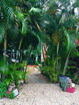 Brasilito, Costa Rica: photo4.jpg