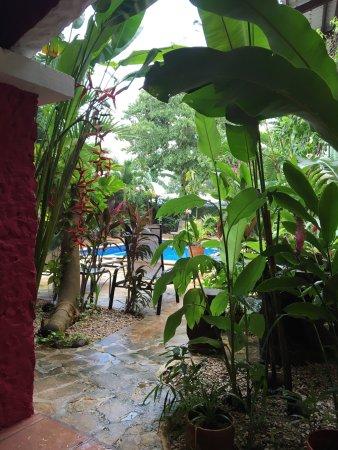 Brasilito, Costa Rica: photo5.jpg