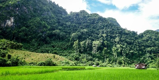 Nong Khiaw, Лаос: IMG-20171007-WA0005_large.jpg